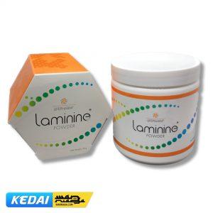 Laminine 4